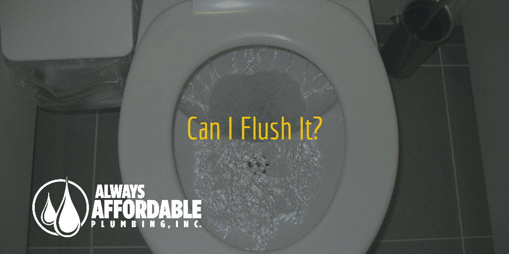 affordable plumbing sacramento-can I flush it-Always Affordable Plumbing