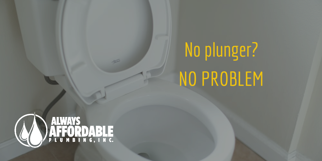 clogged toilet solutions