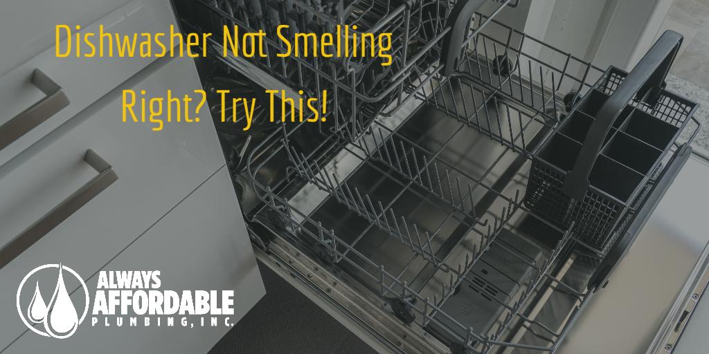 Clean dishwasher filter-best solano plumber tips